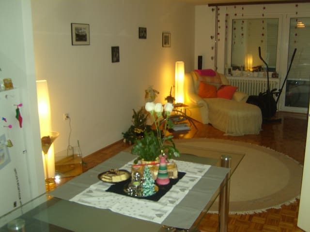 Beautifull flat in Zagreb - City Of Zagreb - Appartement