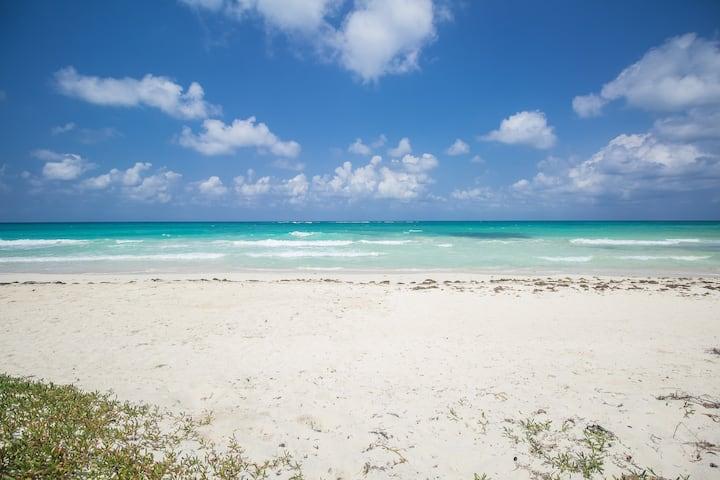 Island breeze on the Beach