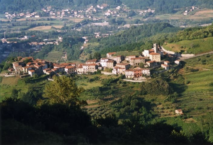 Villa Lucchese del '700 - Trassilico - Wohnung