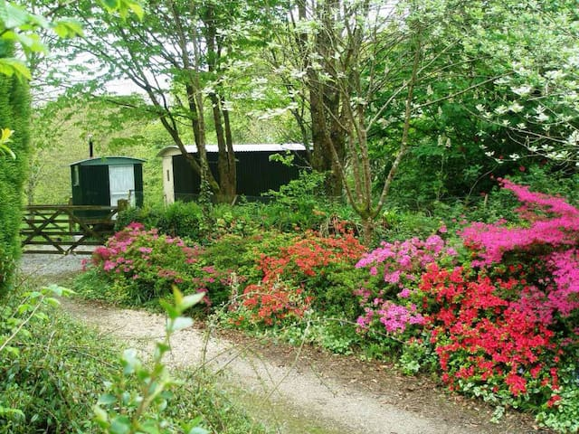 The retreat at Berry Lane Cottage - Nanstallon - Bed & Breakfast