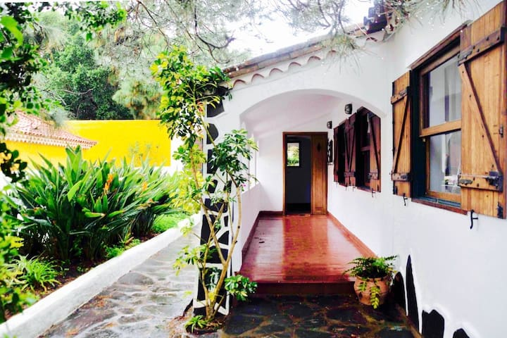 Historic Villa - secret garden & terrace to relax - Las Palmas de Gran Canaria