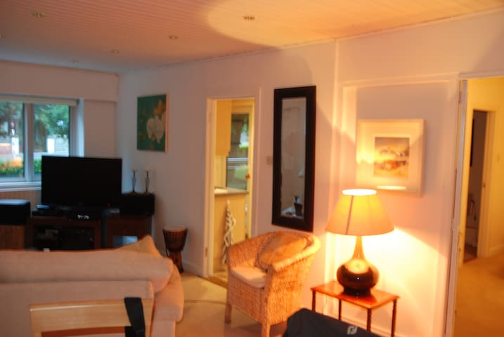 Spacious, Bright 1 Bedroom owners Apartment.