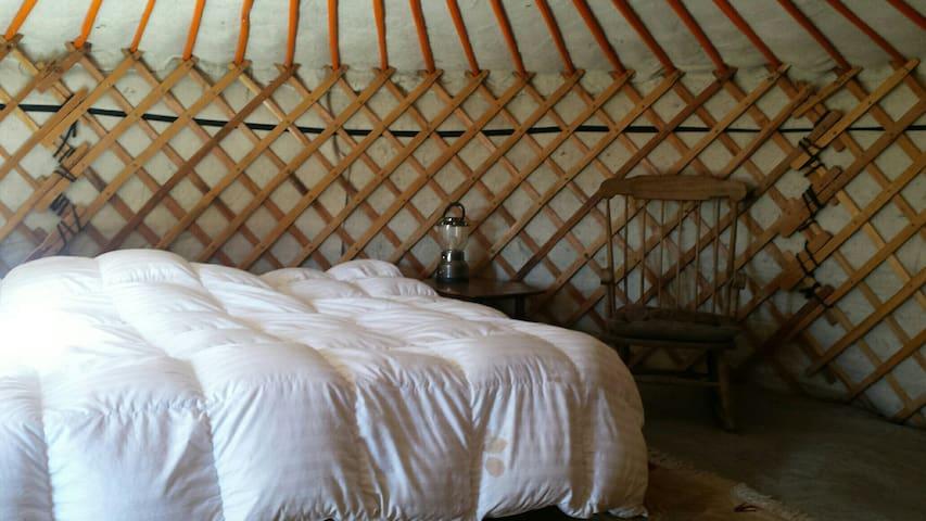 Mongolian Yurt at Helios Farms