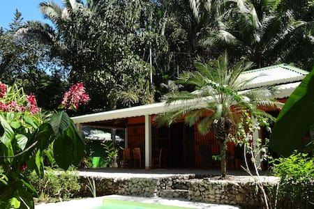 El Pequeño Gecko Verde B&B - Villa Caribe - 5p - ซานโฮเซ