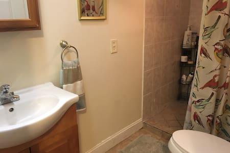 Comfy, affordable Private bedroom Green Line - Boston