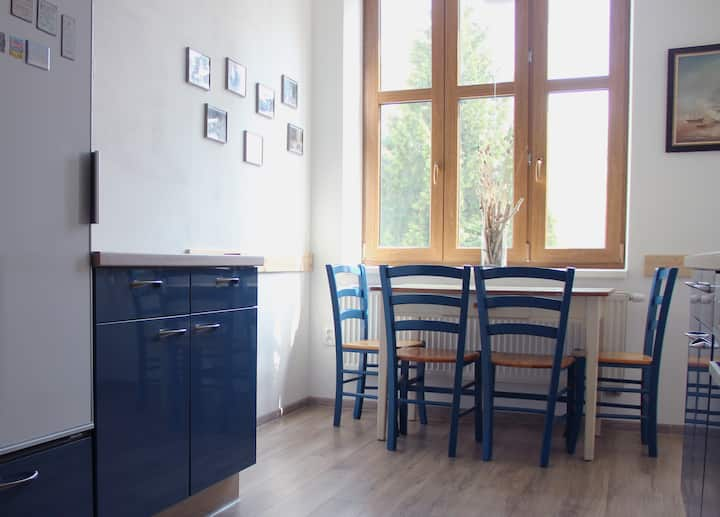 Renovated apartment w/ loggia in the heart of town