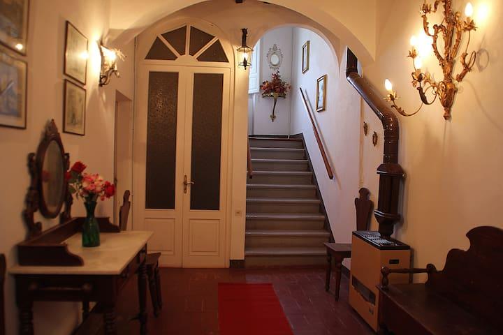 B&B Etruscan Inn - Bibbona - Villa