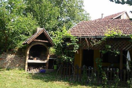 Eco Camp at National Park - Novi Sad - Chalet