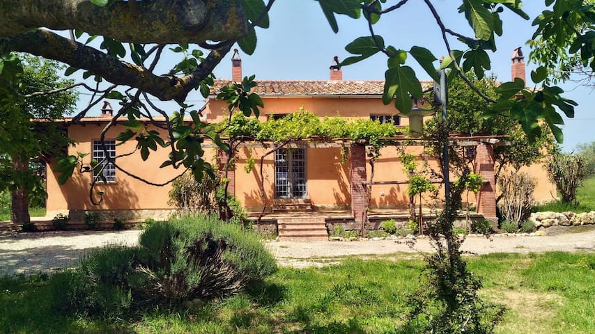 Casale Margherita Country  House - Umbria Italia - Amelia  - House