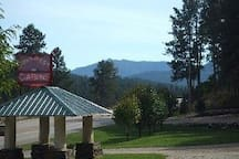 Check in at Pine Rest Cabins 24063 Hwy 385 - 1/2 mile South of Alice's cottage.