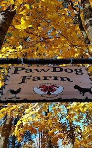 TENTING - PawDog Farm and Retreat - TENTING - Lyman - Tent