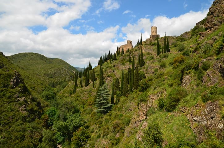 More Cathar castles .... these are at Lastours, close to the Limousis caves.  There are 4 keeps, remains of an ancient village and in Lastours town there's a great restaurant.