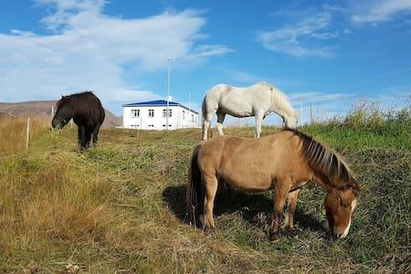 Farmhouse homestay near Dalvík-DBL/TRBL ROOM 13m2
