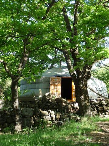 Yourte, yourte ouvre toi et la nature nous dira... - Villeneuve-de-Berg - Khemah Yurt