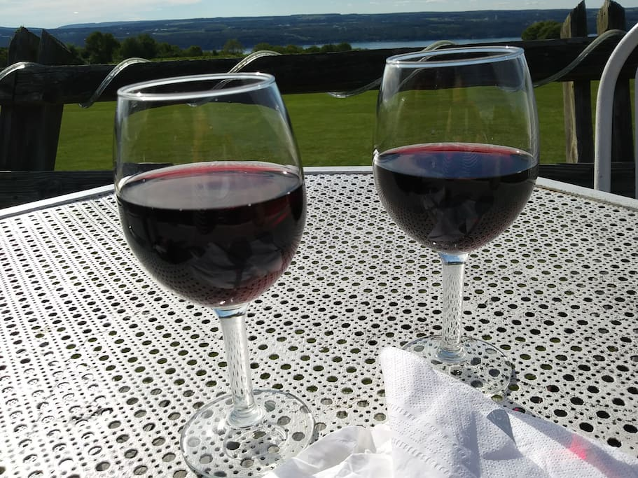 Enjoy our FLX wines & take a tour of the popular Seneca Lake Wine Trail.