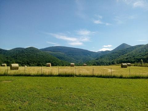 The wooded hills of Saint Bertrand-de-Comminges