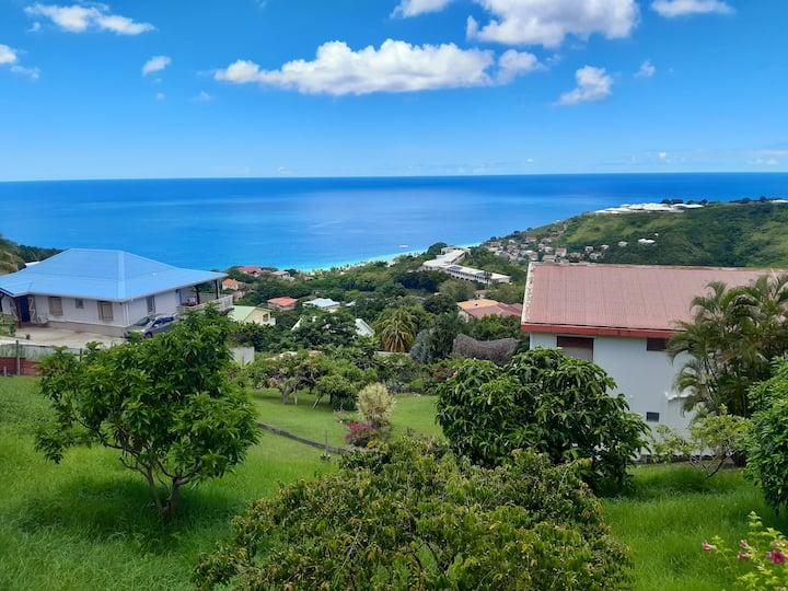 Le Carbet : Spacieux appartement vue Caraïbes