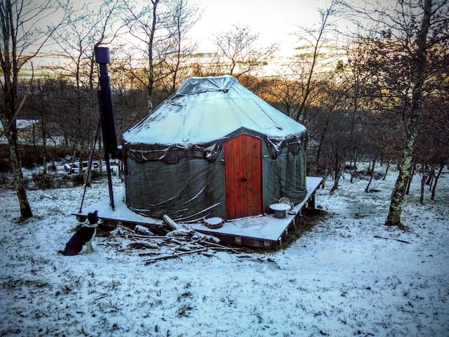Alden Woodland Yurt - Dot's Farm