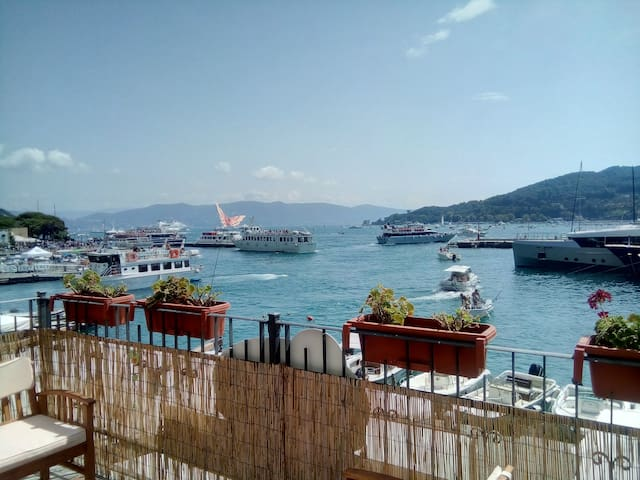 Portovenere - Terrace with a view - Portovenere - Daire