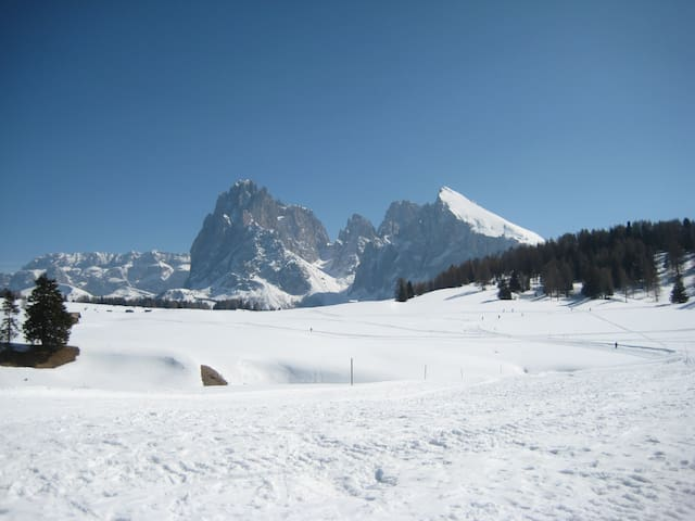 Pied a terre (1) all'Alpe di Siusi UNESCO Heritage - Bolzano - Apartemen