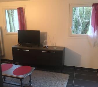 maison studio au calme avec jardin - Le Plessis-Trévise