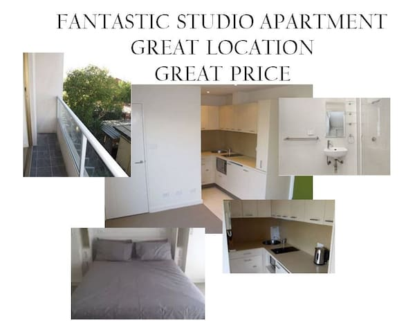Outstanding studio apartment at a cost less than a private room with internet and netflix included.