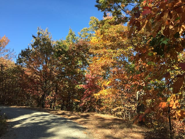 Fall View on private drive