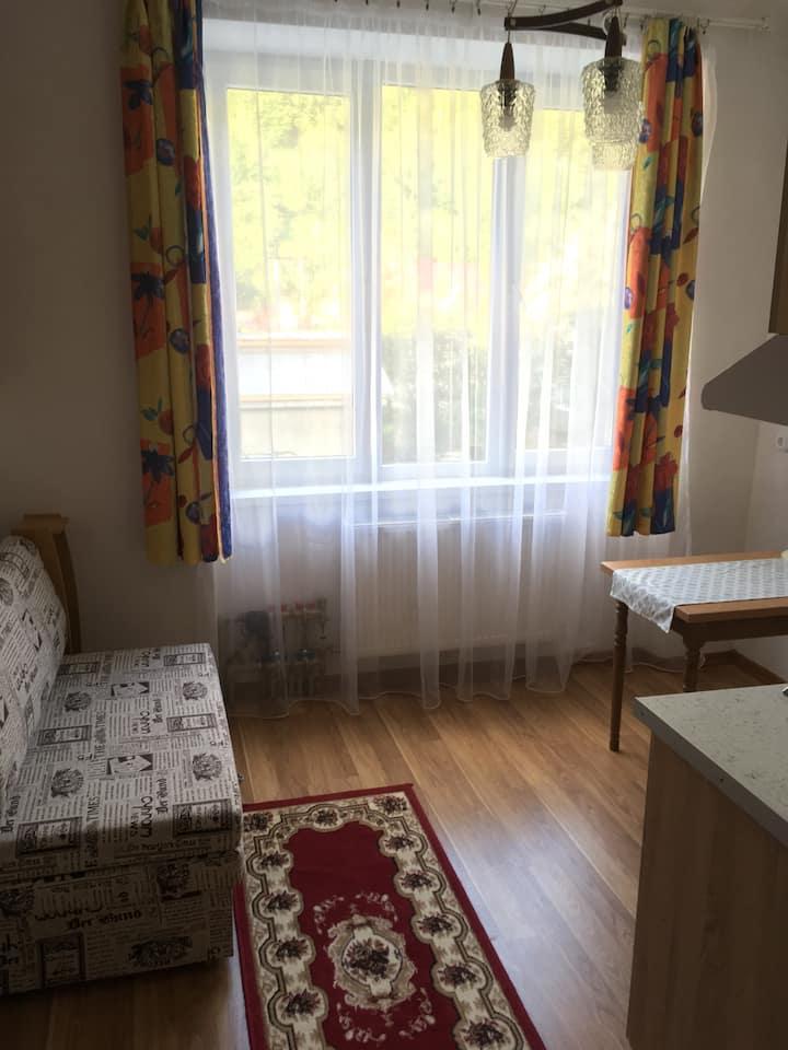 Апартаменти в Міжгір'ї