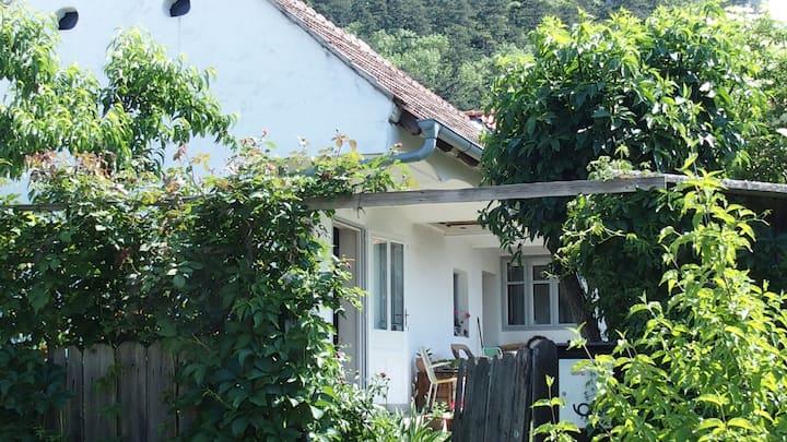 Gartenzimmer für Frauen und Lesben im Weinviertel