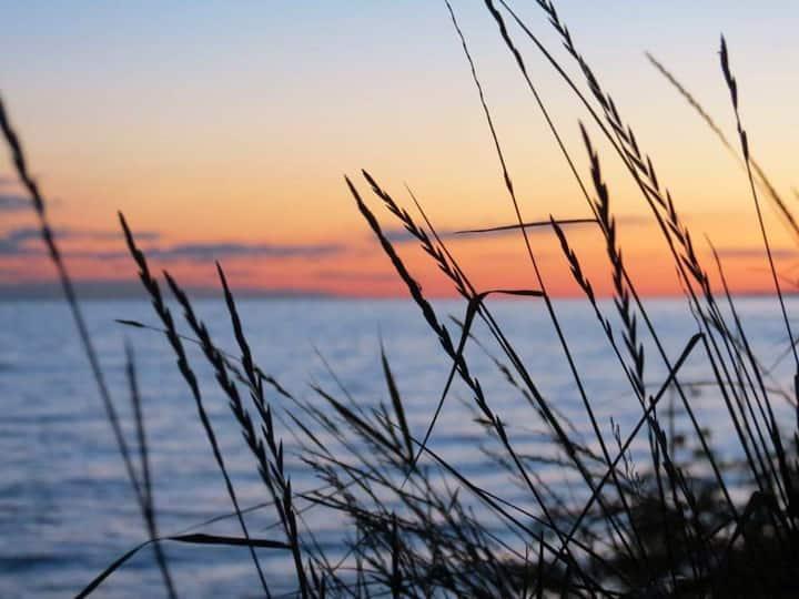 Monks cove b&b,  relaxed beach vibe .