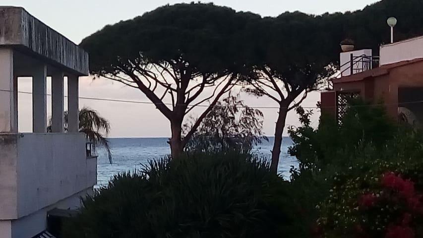 Near the Beach Mondello