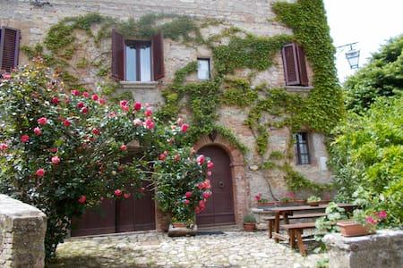 Casa del Capitano di Rocca d'Orcia - Castiglione - Dům
