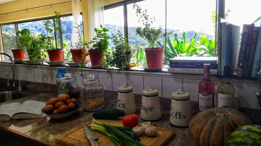 attached to the living room the open, fully equipped kitchen with view over the Boquete Valley