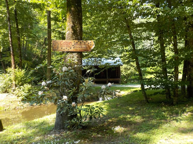 The Hemlock Hide-Away - Robbinsville - Cabaña
