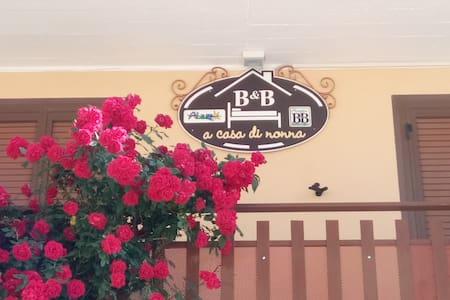 B&B A casa di nonna - Massa D'Albe - Wikt i opierunek