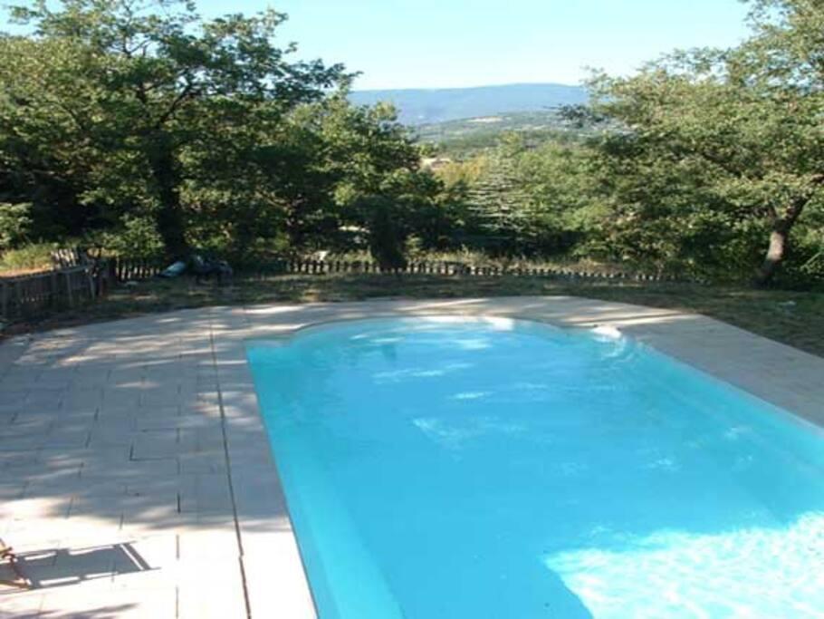 La piscine, au milieu de la foret
