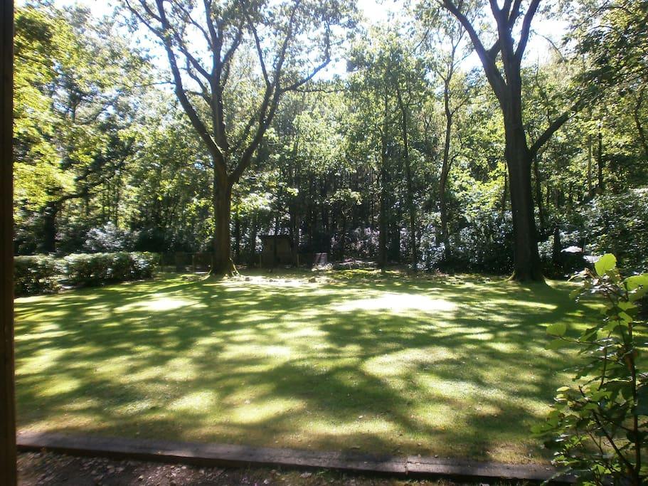 Ruime gras - en mospartijen om lekker op te spelen,