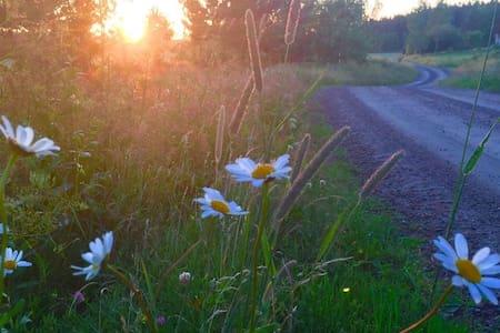 Bo på lantgård med fantastisk utsikt - Bunäs