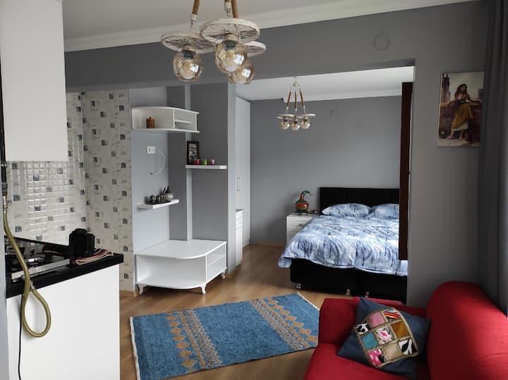 Cozy Studio Room with a big Terrace