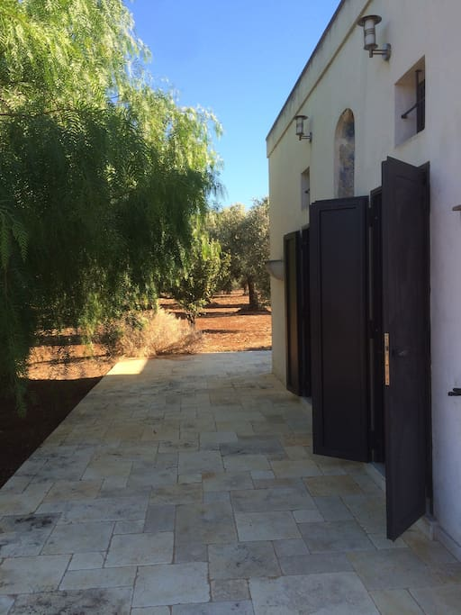 The house is surrounded by countryside on all sides, mostly olive and fig trees.