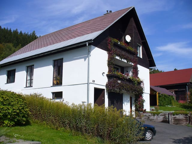Holiday Apartment in Skiing Area in Rokytnice nad Jizerou