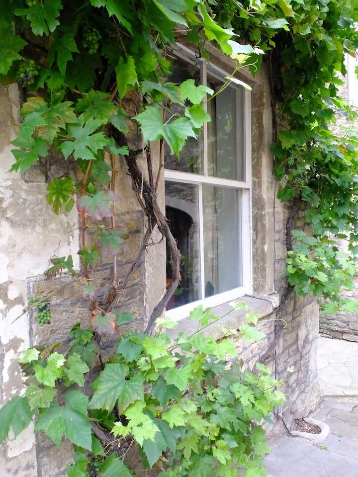 The Vine Cottage