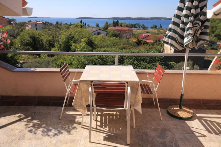 One bedroom apartment with terrace and sea view Fažana (A-2290-c)