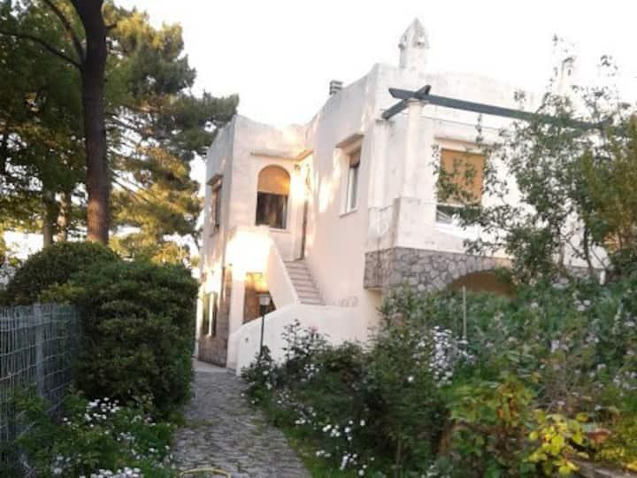Villa Anacapri Center near Axel Munthe Museum