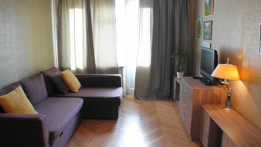 Apartment near the center. Metro Park Kultury.