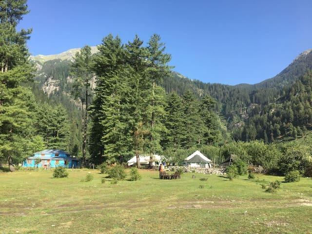 Swiss Camps at Kullu Sarahan | All Meals