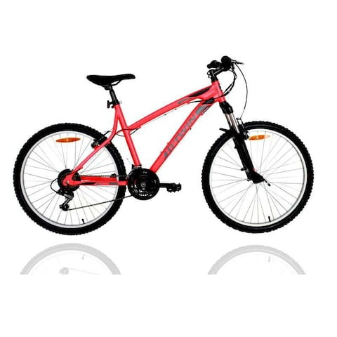 We have two mountain bikes and helmets for rent too :)
