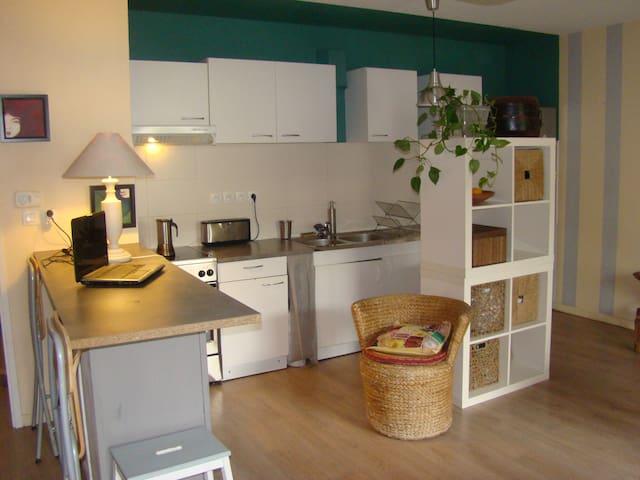 Chambre, appartement calme, terasse, métro - Ramonville-Saint-Agne