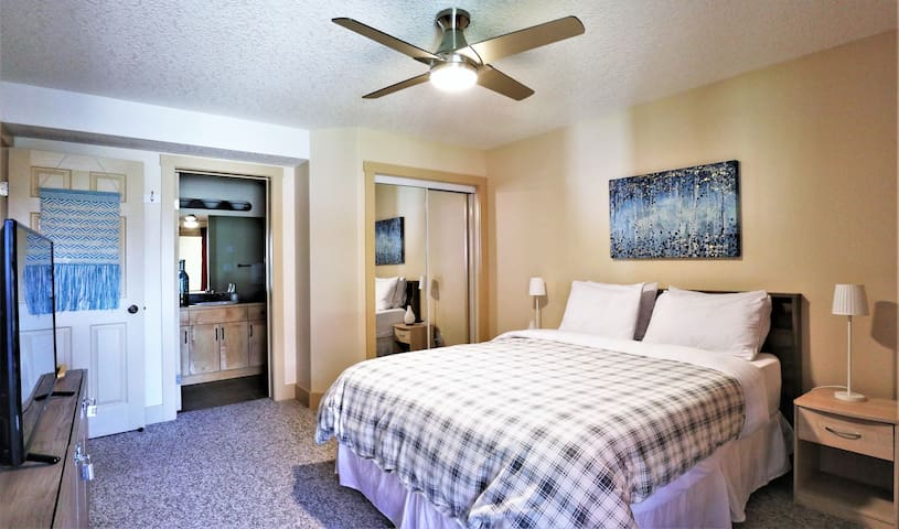 Main room. 50 in smart tv. High quality ceiling fan with dimmable light and remote control. Extra sheets. Two types of blankets depending on weather.