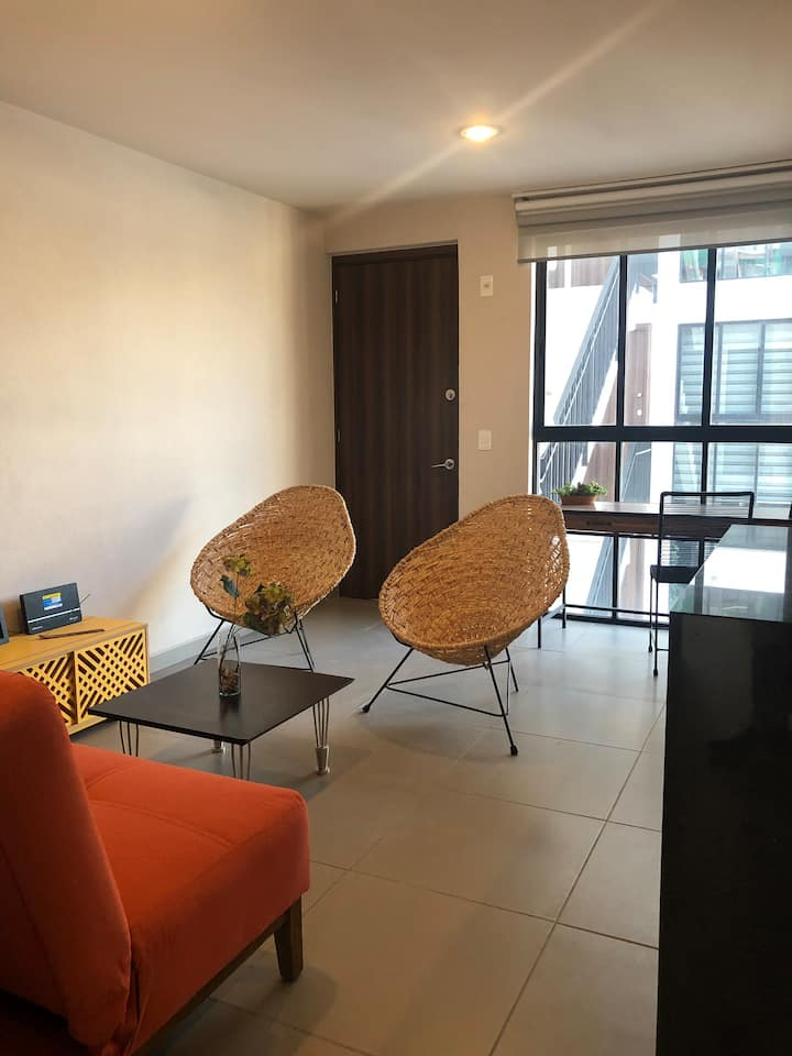 Beautiful apartment in Bucareli